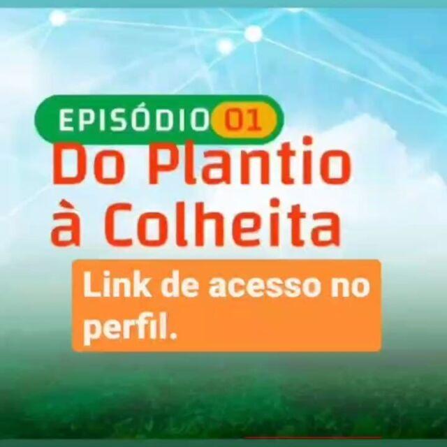 Hoje, às 20 horas Episódio 1 - Do plantio á colheita. Link no perfil  Te esperamos no YouTube https://youtu.be/ynoIVaFuTh4