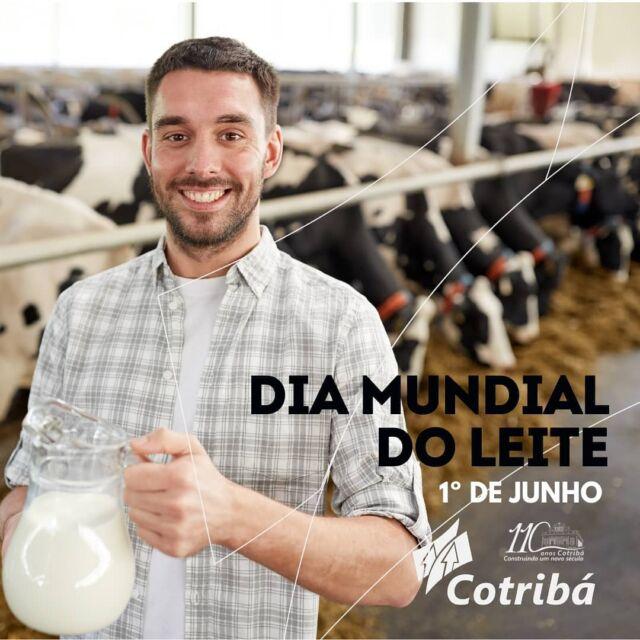"""🥛🐄 DIA MUNDIAL DO LEITE 🥛🐄  O dia 1º de junho foi escolhido para celebrar o """"Dia Mundial do Leite"""" com o objetivo de incentivar o consumo de produtos lácteos pela população mundial.  O leite é um alimento saudável e nutritivo. Seu consumo, na forma tradicional ou através de seus inúmeros derivados, é indicado para a composição de uma dieta balanceada.   A Cotribá, além da valorizar e incentivar o consumo do leite como produto alimentar, destaca a importância da bacia leiteira para a economia da região.   Diariamente, os produtores associados da Cotribá destinam em média 98 mil litros de leite para industrialização na fábrica da CCGL (Cooperativa Central Gaúcha Ltda). São praticamente 3 milhões de litros todos os meses. Já as rações produzidas pela Cotribá alimentam um rebanho estimado de 70 mil vacas leiteiras, que produzem mais de 1 milhão de litros de leite diariamente.   A produção de leite movimenta a economia regional em diversos aspectos e em muitas etapas, gerando renda e desenvolvimento para os municípios.   Há mais de 40 anos, a Cotribá incentiva e desenvolve a atividade leiteira na região do Alto Jacuí. A cooperativa parabeniza todos os trabalhadores do setor, que se dedicam diariamente no cuidado e alimentação dos animais, na ordenha, no transporte e na industrialização, para ofertar um leite de qualidade para o consumo dos gaúchos e brasileiros.   #DiadoLeite #Cotribá #Cooperativismo #ProduçãoAnimal #Produçãoleiteira #Leite"""