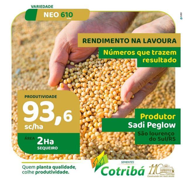 Excelente produtividade na região sul. 🎯📈👨🏻🌾🌱 Quem planta qualidade, colhe produtividade.  #safrasojabrasil #soja #produtividade  #cotribá #sementescotribá #cotriba110anos